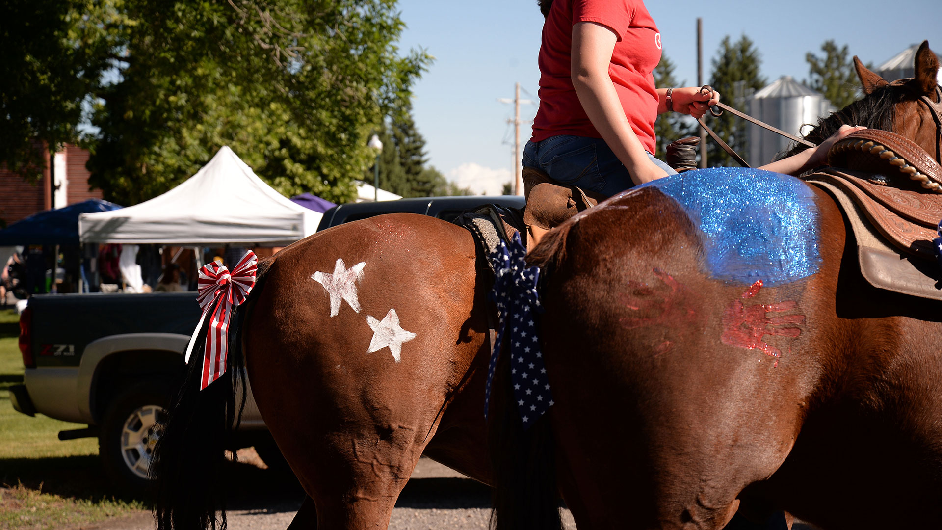 Ashton 4th of July Parade Horses